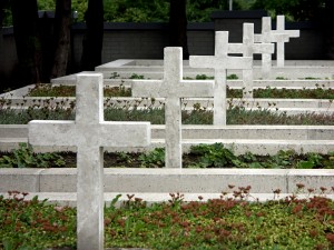 Row of crosses in cemetery